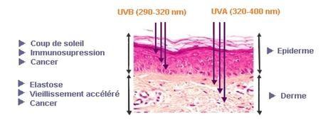 Rayon UV peau noire